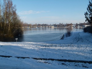 Het park in de winter
